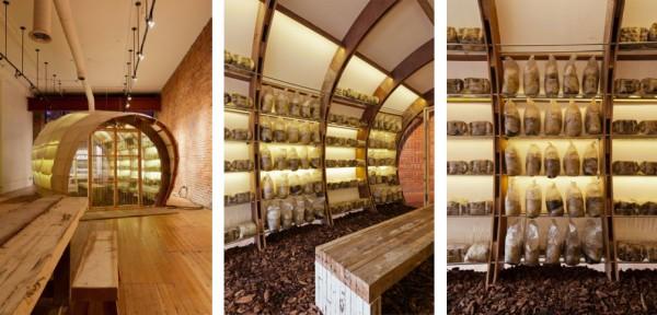 Mushroom_interior_2.jpg